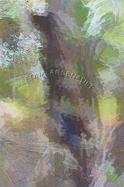 IMPRESSIONISTIC;LENS CREATION;DIGITAL ART;ABSTRACT;LEAVES;FALL;TREES;VERTICAL