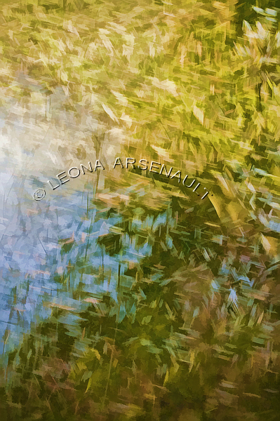 IMPRESSIONISTIC;LENS CREATION;DIGITAL ART;ABSTRACT;LEAVES;FALL;WATER;VERTICAL