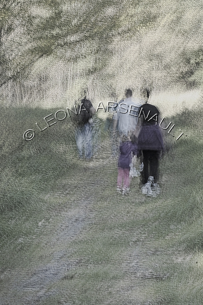 IMPRESSIONISTIC;LENS CREATION;DIGITAL ART;ABSTRACT;EXERCISES;WALKERS;WALKING;PEOPLE;PATHS;LANES;FORESTS;TREES;VERTICAL