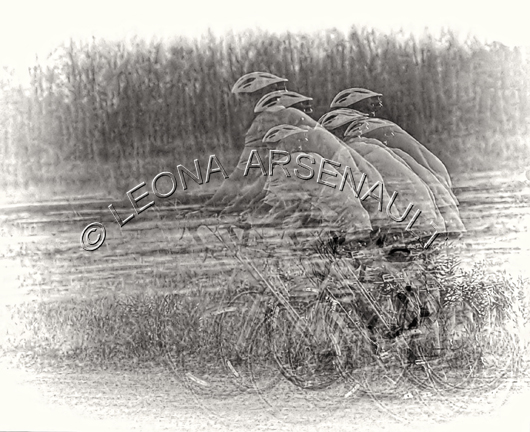 IMPRESSIONISTIC;LENS CREATION;DIGITAL ART;ABSTRACT;CYCLISTS;BICYCLES;HELMETS;EXCISES;HORIZONTAL