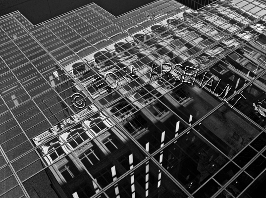 CANADA;ONTARIO;OTTAWA;CAPITAL;BUILDINGS;REFLECTIONS;BLACK_AND_WHITE;HORIZONTAL