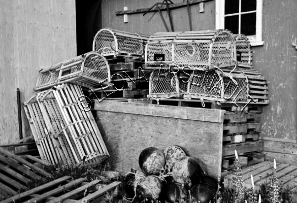 CANADA;PRINCE EDWARD ISLAND;QUEEN'S COUNTY;STANLEY BRIDGE;LOBSTER TRAPS;TRAPS;SHEDS;SHACKS;BUOYS;NAUTICAL;BLACK AND WHITE;LANDSCAPE;SCENIC;HORIZONTAL