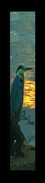 BLUE HERON;BIRD;BOOKMARK;