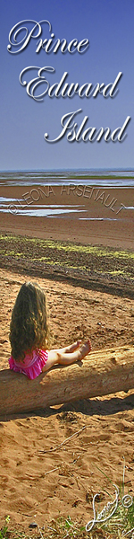 BEACH;SHORE;CHILD;GIRL;LOG;RED SAND; BOOKMARK;