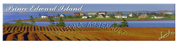POTATO FIELD;HEBRIDES;WATER;NEW LONDON BAY;BOOKMARK;