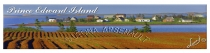 POTATO_FIELD;HEBRIDES;WATER;NEW_LONDON_BAY;BOOKMARK;