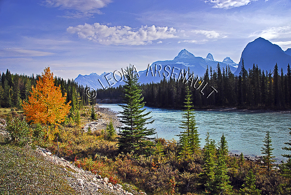 CANADA;ALBERTA;ICEFIELD PARKWAY;CANADIAN ROCKIES;ROCKY MOUNTAINS;WATER;FALL;FALL COLORS;WATERSCAPE;LANDSCAPE;SCENIC;HORIZONTAL