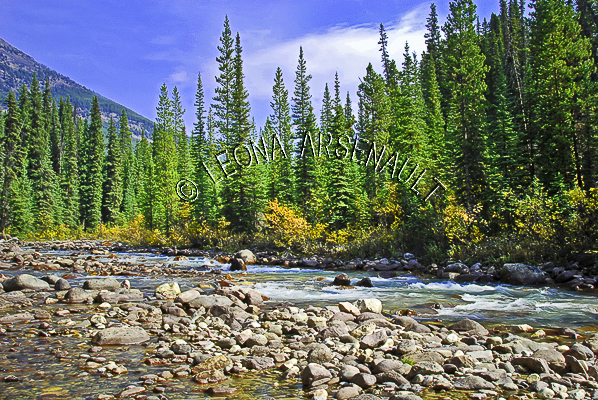 CANADA;ALBERTA;ICEFIELD PARKWAY;CANADIAN ROCKIES;ROCKY MOUNTAINS;WATER;FALL;ROCKS;WATERSCAPE;LANDSCAPE;SCENIC;HORIZONTAL