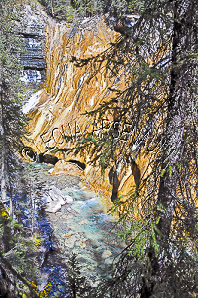CANADA;ALBERTA;BANFF NATIONAL PARK;JOHNSTON CANYON;ROCKS;WATER;FLOW;FLUID;STREAMS;LIMESTONE;WATERSCAPE;VERTICAL