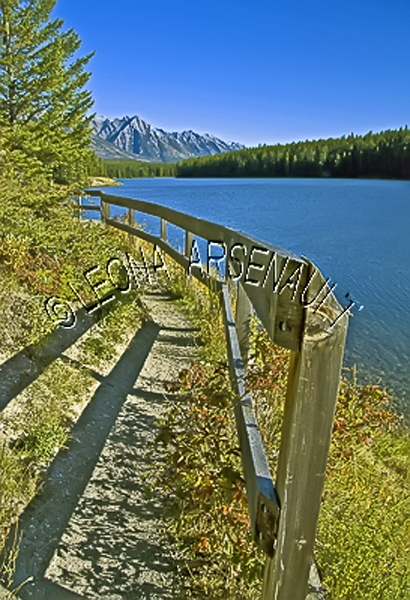 CANADA;ALBERTA;BANFF NATIONAL PARK;CANADIAN ROCKIES;ROCKY MOUNTAIN;JOHNSON LAKES;LAKE;WATER;PATHS;WATERSCAPE;LANDSCAPE;SCENIC;VERTICAL