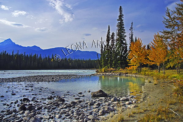 CANADA;ALBERTA;ICEFIELD PARKWAY;CANADIAN ROCKIES;ROCKY MOUNTAINS;WATER;ROCKS;FALL;FALL COLORS;WATERSCAPE;LANDSCAPE;SCENIC;HORIZONTAL;