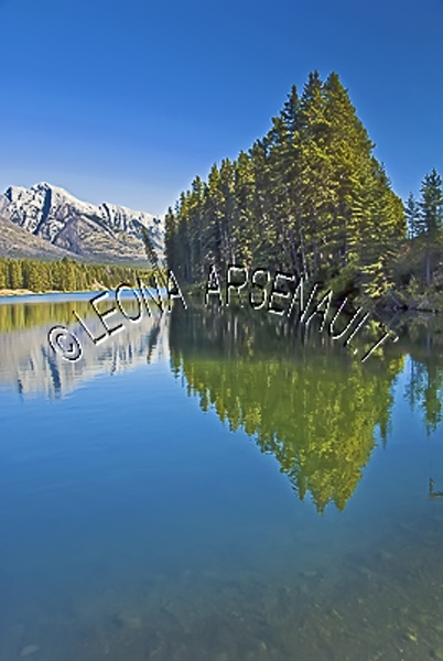 CANADA;ALBERTA;BANFF NATIONAL PARK;CANADIAN ROCKIES;ROCKY MOUNTAIN;JOHNSON LAKE;LAKE;WATER;ROCKS;REFLECTIONS;LANDSCAPE;SCENIC;WATERSCAPE;VERTICAL