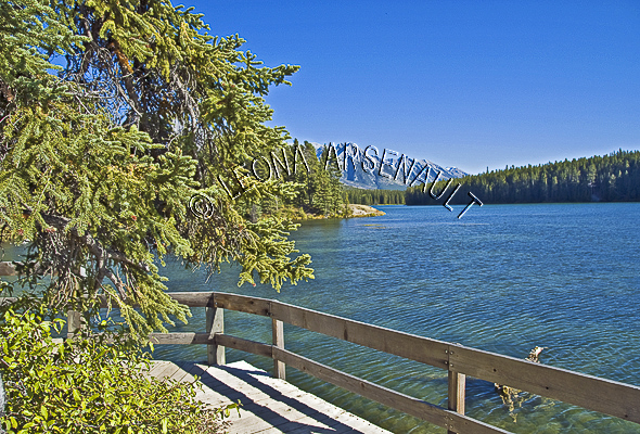 CANADA;ALBERTA;BANFF NATIONAL PARK;CANADIAN ROCKIES;ROCKY MOUNTAIN;JOHNSON LAKE;LAKES;PATHS;WATER;WATERSCAPE;LANDSCAPE;SCENIC;HORIZONTAL