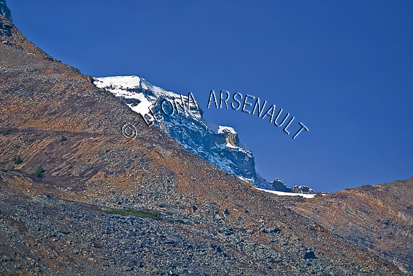 CANADA;ALBERTA;ICEFIELD PARKWAY;CANADIAN ROCKIES;ROCKY MOUNTAINS;SNOW;FALL;HORIZONTAL;