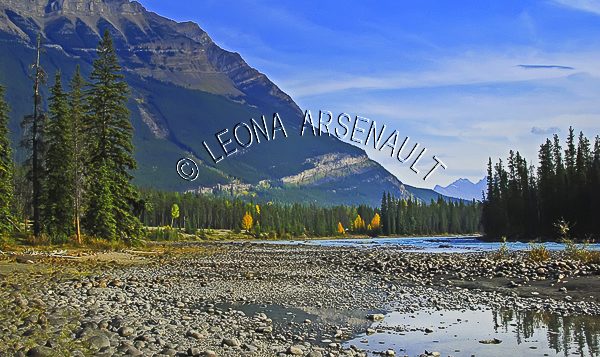 CANADA;ALBERTA;ICEFIELD PARKWAY;CANADIAN ROCKIES;ROCKY MOUNTAINS;WATER;FALL;WATERSCAPE;LANDSCAPE;HORIZONTAL;