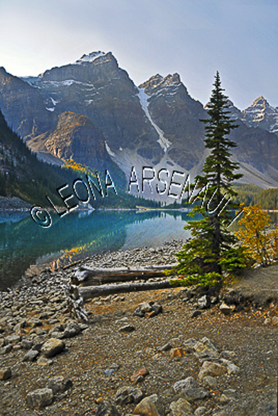 CANADA;ALBERTA;CANADIAN ROCKIES;ROCKY MOUNTAINS;BANFF NATIONAL PARK;MORAINE LAKE;LAKES;MOUNTAINS;WATER;REFLECTIONS;SUMMER;WATERSCAPE;LANDSCAPE;SCENIC;VERTICAL