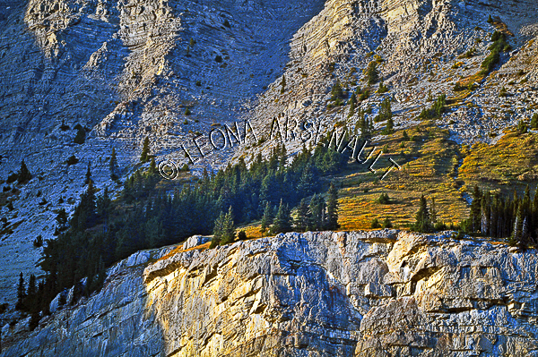 CANADA;ALBERTA;ICEFIELD PARKWAY;CANADIAN ROCKIES;ROCKY MOUNTAINS;FALL;CLIFFS;ROCKS;ROCK FORMATION;HORIZONTAL