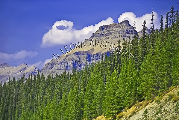 CANADA;ALBERTA;ICEFIELD PARKWAY;CANADIAN ROCKIES;ROCKY MOUNTAINS;FALL;CLOUDS;MOUNTAINS;LANDSCAPE;SCENIC;HORIZONTAL