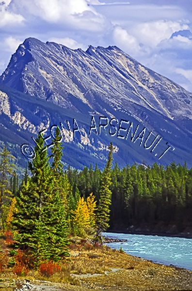 CANADA;ALBERTA;ICEFIELD PARKWAY;CANADIAN ROCKIES;ROCKY MOUNTAINS;FALL;FALL COLORS;MOUNTAINS;WATER;WATERSCAPE;LANDSCAPE;SCENIC;VERTICAL