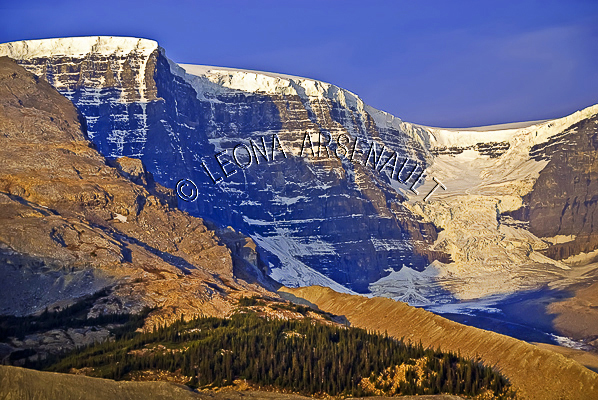 CANADA;ALBERTA;ICEFIELD PARKWAY;CANADIAN ROCKIES;ROCKY MOUNTAINS;FALL;ROCK FORMATION;LANDSCAPE;HORIZONTAL