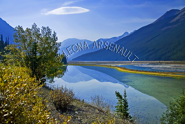 CANADA;ALBERTA;ICEFIELD PARKWAY;CANADIAN ROCKIES;ROCKY MOUNTAINS;WATER;FALL;REFLECTIONS;WATERSCAPE;LANDSCAPE;SCENIC;HORIZONTAL