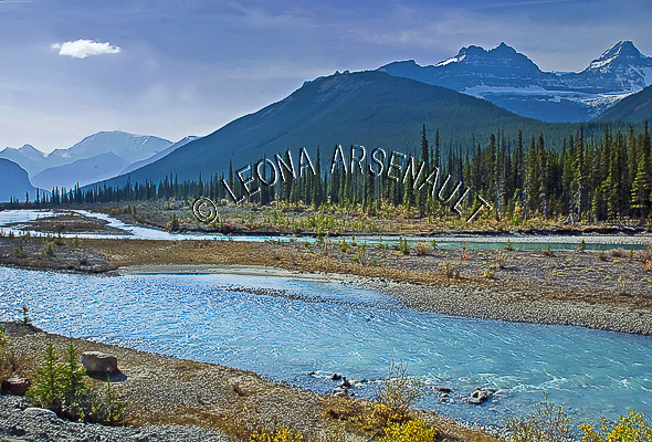 CANADA;ALBERTA;ICEFIELD PARKWAY;CANADIAN ROCKIES;ROCKY MOUNTAINS;WATER;FALL;LANDSCAPE;SCENIC;WATERSCAPE;HORIZONTAL