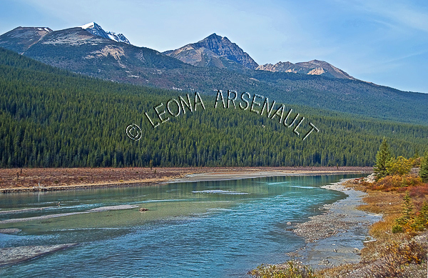 CANADA;ALBERTA;ICEFIELD PARKWAY;CANADIAN ROCKIES;ROCKY MOUNTAINS;WATER;FALL;WATERSCAPE;LANDSCAPE;SCENIC;HORIZONTAL