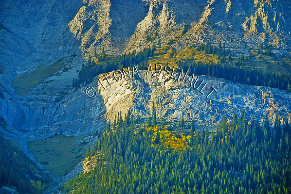 CANADA;ALBERTA;ICEFIELD PARKWAY;CANADIAN ROCKIES;ROCKY MOUNTAINS;ROCK FORMATION;FALL;LANDSCAPE;HORIZONTAL