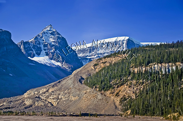 CANADA;ALBERTA;ICEFIELD PARKWAY;CANADIAN ROCKIES;ROCKY MOUNTAINS;;FALL;LANDSCAPE;HORIZONTAL