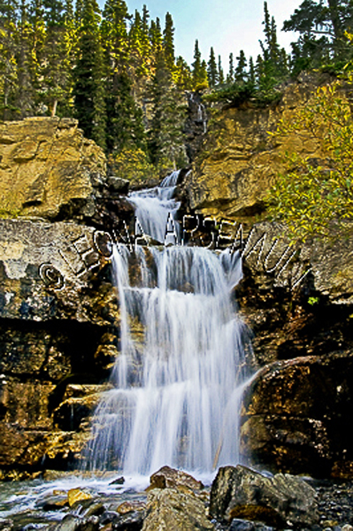 CANADA;ALBERTA;ICEFIELD PARKWAY;CANADIAN ROCKIES;ROCKY MOUNTAINS;WATER;WATERFALLS;FLUID;FLOW;ROCKS;FALL;WATERSCAPE;LANDSCAPE;SCENIC;VERTICAL