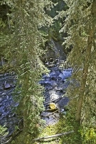 CANADA;ALBERTA;BANFF_NATIONAL_PARK;JOHNSTON_CANYON;WATER;TREES;VERTICAL