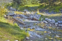 CANADA;ALBERTA;BANFF_NATIONAL_PARK;JOHNSON_LAKE;LAKE;ROCKS;STREAMS;CREEKS;FLOW;F
