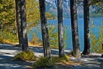 CANADA;ALBERTA;MINNEWANKA_LAKE;CANADIAN_ROCKIES;ROCKY_MOUNTAINS;WATER;LAKES;SUMM