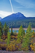 CANADA;ALBERTA;ICEFIELD_PARKWAY;CANADIAN_ROCKIES;ROCKY_MOUNTAINS;WATER;FALL;LAND