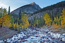 CANADA;ALBERTA;ICEFIELD_PARKWAY;CANADIAN_ROCKIES;ROCKY_MOUNTAINS;WATER;ROCKS;WAT