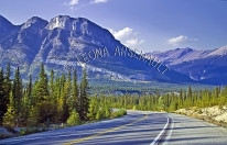 CANADA;ALBERTA;ICEFIELD_PARKWAY;CANADIAN_ROCKIES;ROCKY_MOUNTAINS;HIGHWAY;FALL;LA