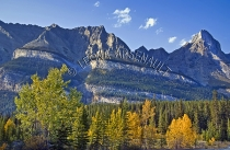 CANADA;ALBERTA;ICEFIELD_PARKWAY;CANADIAN_ROCKIES;ROCKY_MOUNTAINS;FALL;LANDSCAPE;
