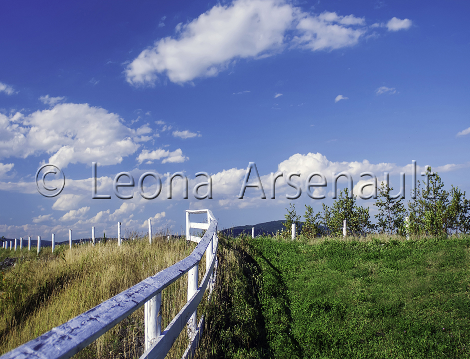 CANADA;NEW BRUNSWICK;HARVEY;FENCE;CLOUDS;HORIZONTAL: