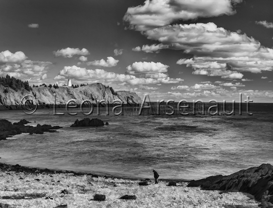 CANADA;NEW BRUNSWICK;GRAND MANAN;WATER;BEACH;HORIZONTAL;LIGHTHOUSE;CLIFF;ROCKS;BLACK AND WHITE;