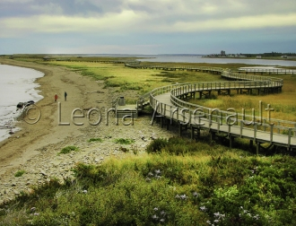 CANADA;NEW_BRUNSWICK;BOUCTOUCHE;IRVING_ECO_CENTRE;BRIDGE;WATER;HORIZONTAL