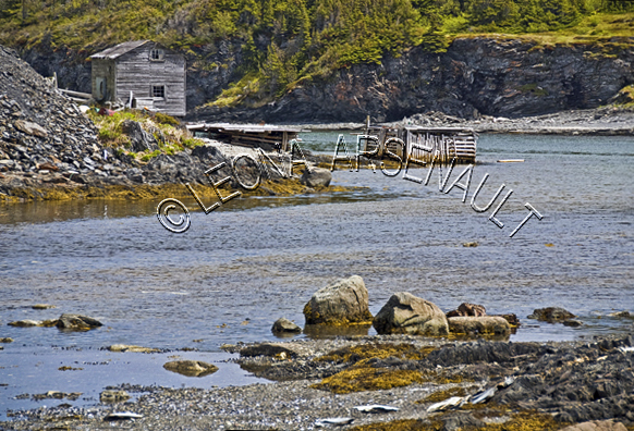 CANADA;NEWFOUNDLAND;ST LUNAIRE-GRIQUET;WATER;SHED;SHACK;BUILDING;COASTAL;ROCKS;NAUTICAL;SUMMER;SEASCAPE;LANDSCAPE;SCENIC;HORIZONTAL;