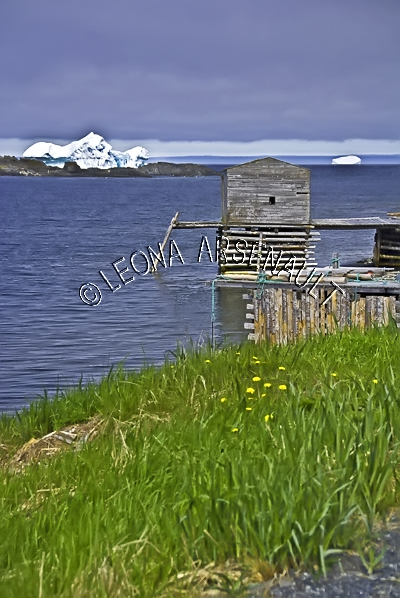 CANADA;NEWFOUNDLAND;ST LUNAIRE-GRIQUET;WATER;COASTAL;SHACK;SHED;BUILDING;NAUTICAL;CLIFF;SUMMER;SEASCAPE;SCENIC;VERTICAL