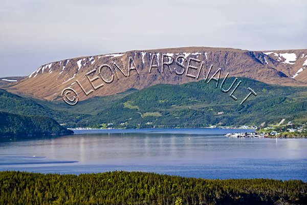 CANADA;NEWFOUNDLAND;GROS MORNE NATIONAL PARK;NORRIS POINT;SHORE;WATER;BONNE BAY;COASTAL;NAUTICAL;SUMMER;WATERSCAPE;LANDSCAPE;SCENIC;HORIZONTAL;