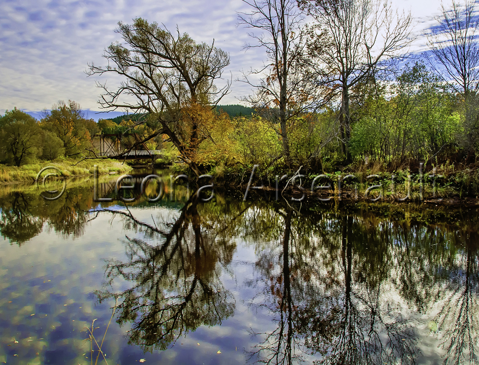CANADA;NOVA SCOTIA;CAPE BRETON ISLAND;REFLECTION;WATERSCAPE;WATER;TREES;HORIZONTAL;SCENIC;