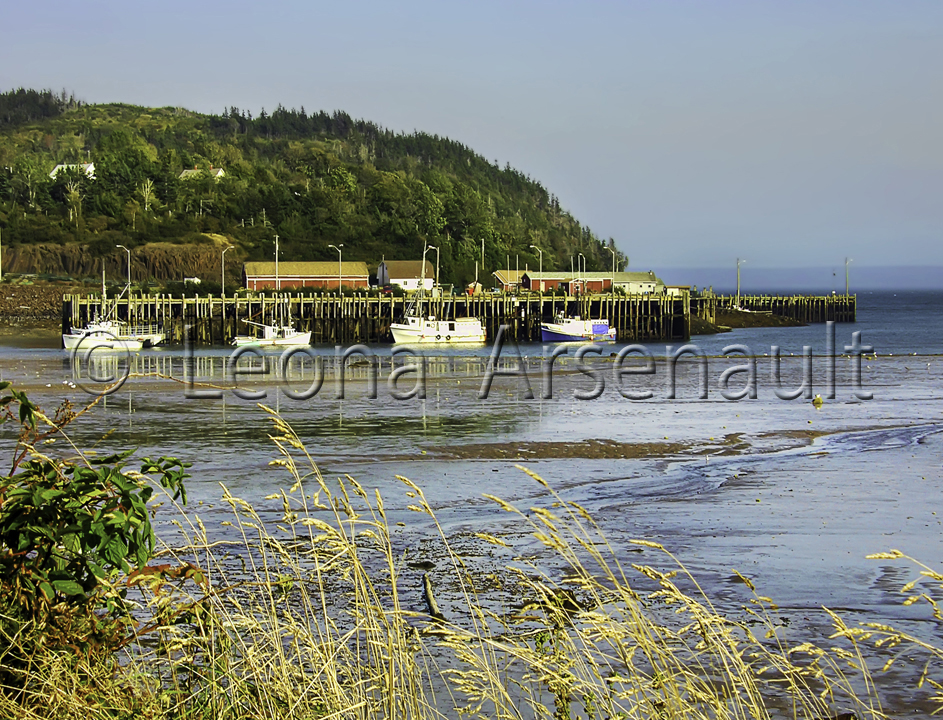 CANADA;NOVA SCOTIA;LONG ISLAND;BOATS;NAUTICAL;WATER;WHARF;WATERSCAPE;HORIZONTAL;