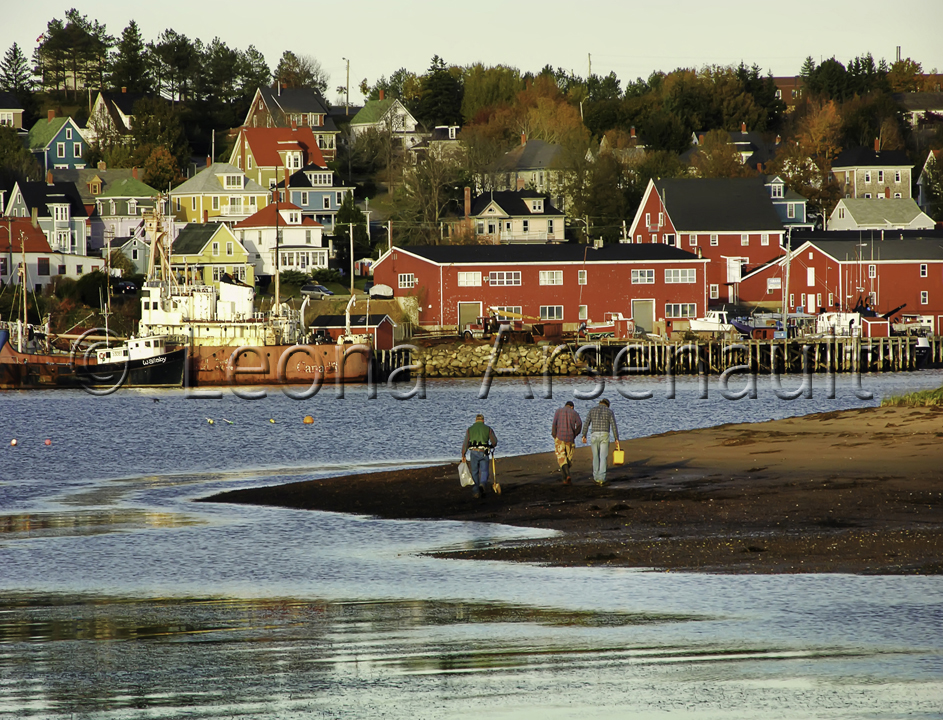 CANADA;NOVA SCOTIA;LUNENBURG;BUILDINGS;WATER;CLAM DIGGING;HORIZONTAL;