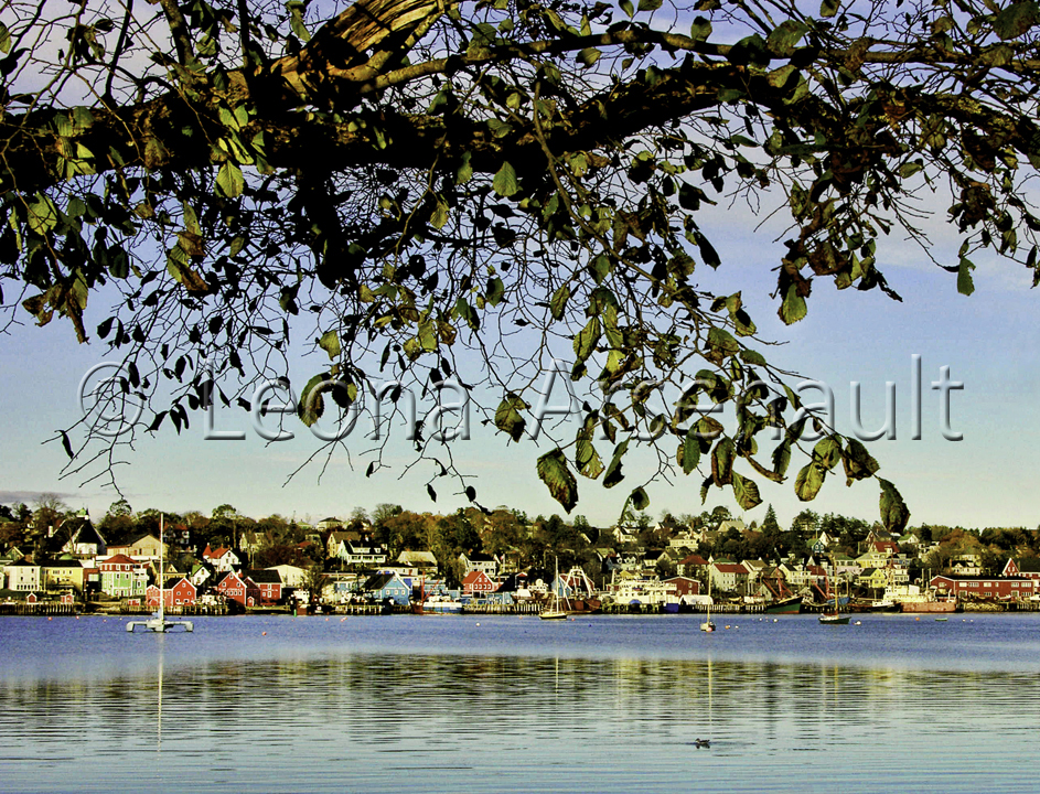 CANADA;NOVA SCOTIA;LUNENBURG;WATER;SCENIC;BUILDINGS;HORIZONTAL;