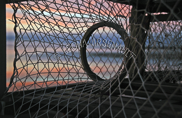 CANADA;PRINCE EDWARD ISLAND;PRINCE COUNTY;LOBSTER TRAPS;TRAPS;SUNSET;DUSK;SILHOUETTES;NAUTICAL;HORIZONTAL