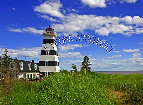 CANADA;PRINCE EDWARD ISLAND;PRINCE COUNTY;WEST POINT LIGHTHOUSE;LIGHTHOUSES;NAUTICAL;SUMMER;BEACHES;SAND;LANDSCAPE;SCENIC;HORIZONTAL
