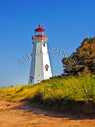CANADA;PRINCE EDWARD ISLAND;KING'S COUNTY;EAST POINT ;LIGHTHOUSE;NAUTICAL;BEACH;SUMMER;LANDSCAPE;SCENIC;VERTICAL